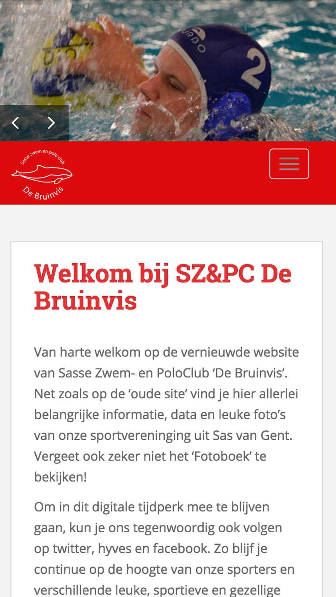 debruinvis.nl mobile preview