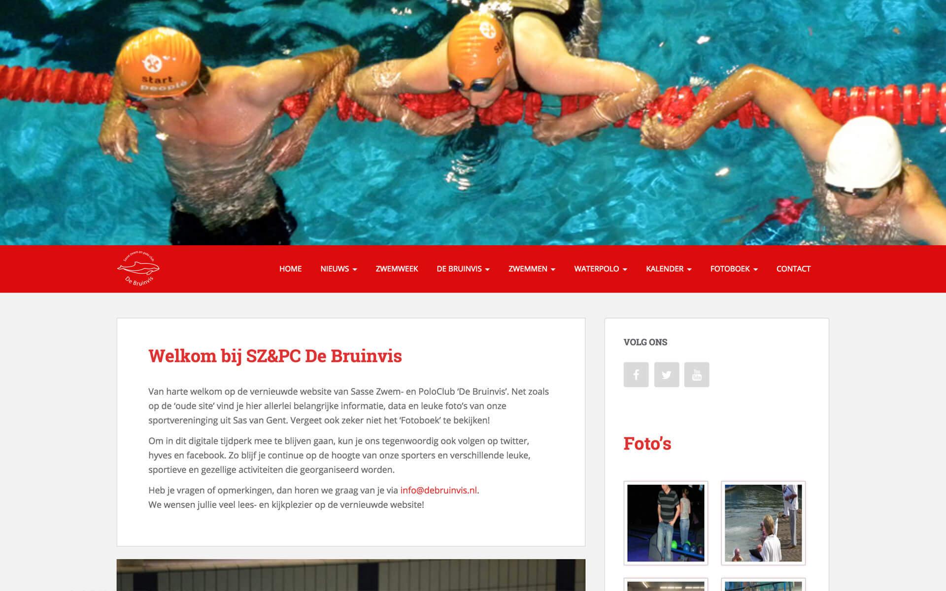 debruinvis.nl desktop preview