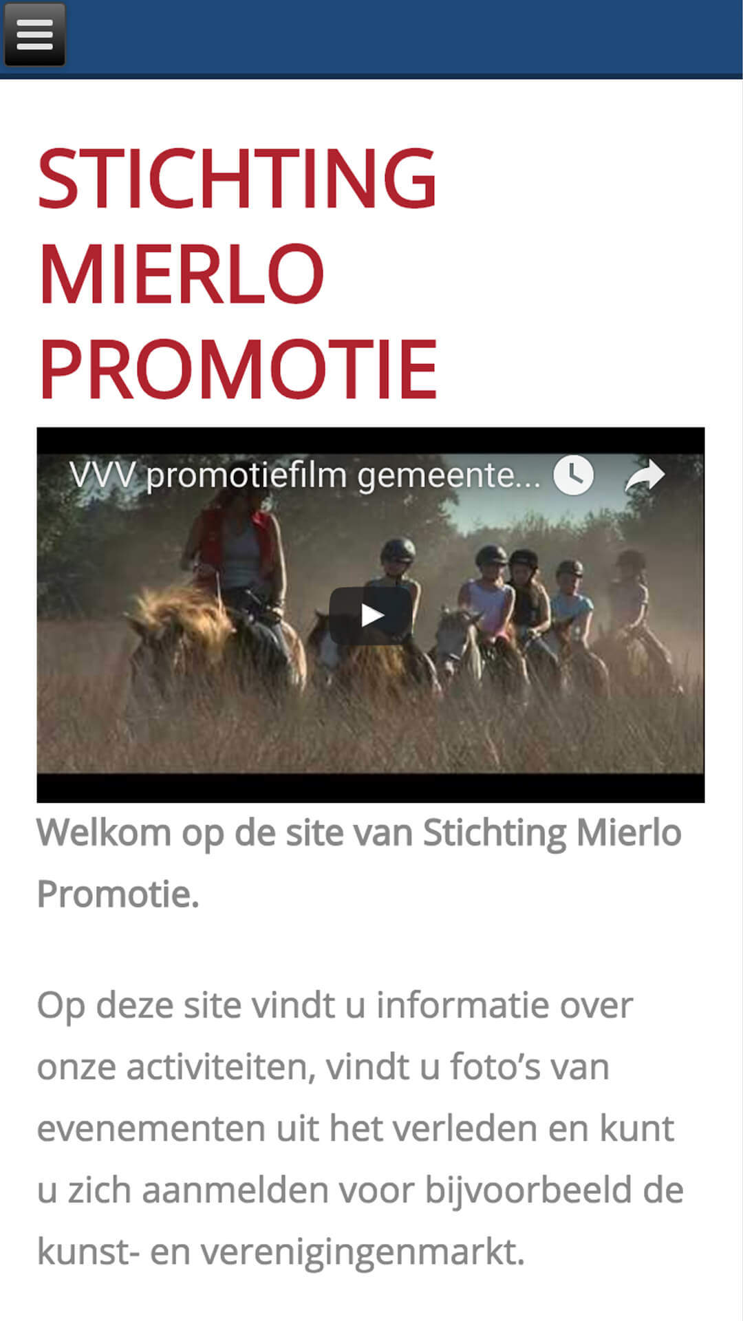 mierlopromotie.nl mobile preview