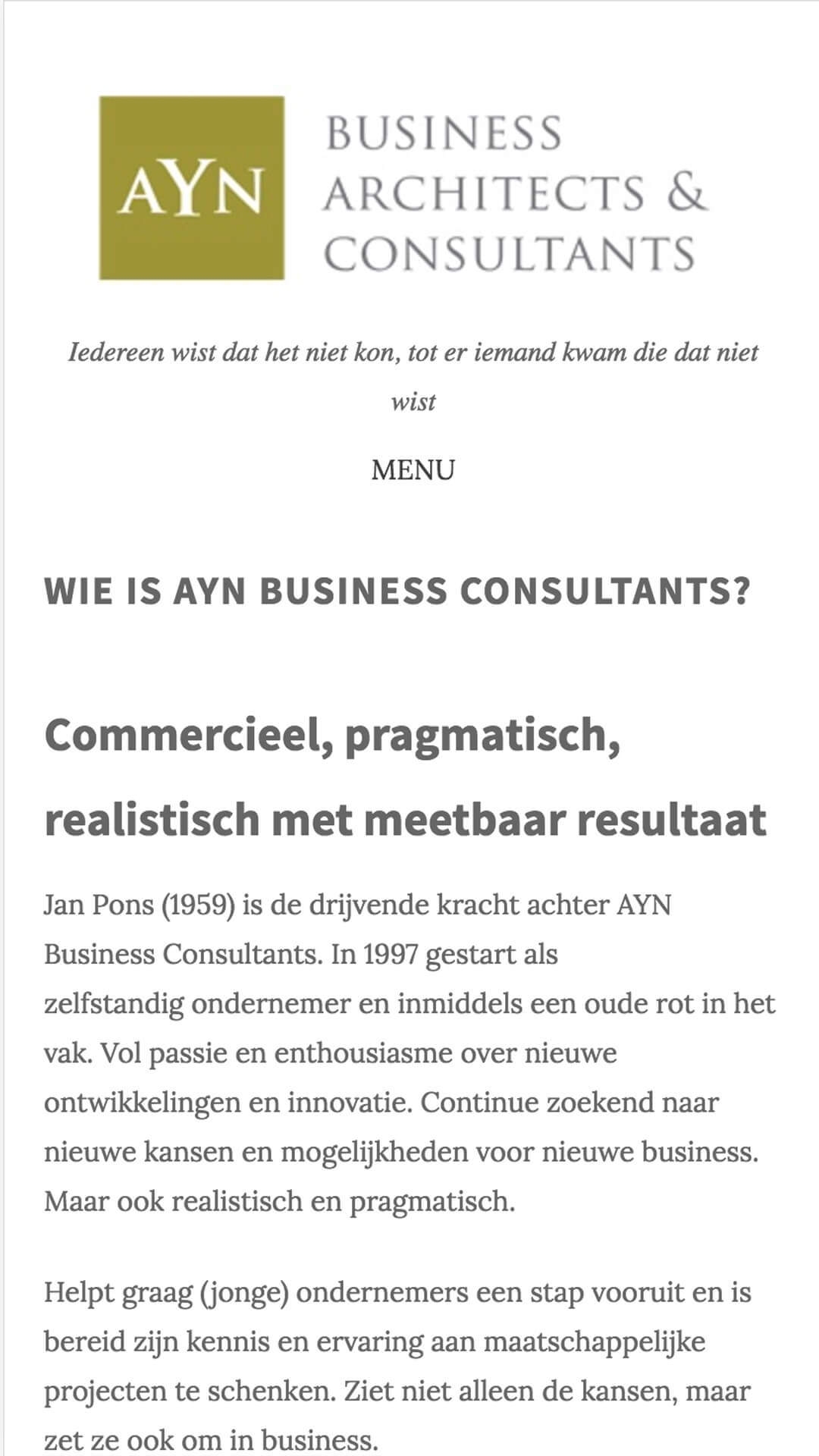 ayn.nl mobile preview