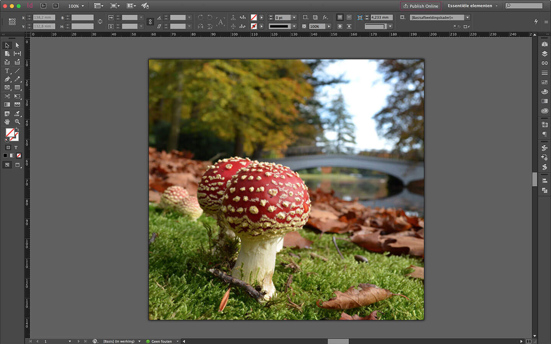 Ontwerp spanframe voor particulier interieur - verwisselbare wanddecoratie - paddenstoelen