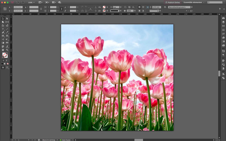 Ontwerp spanframe voor particulier interieur - verwisselbare wanddecoratie - tulpen